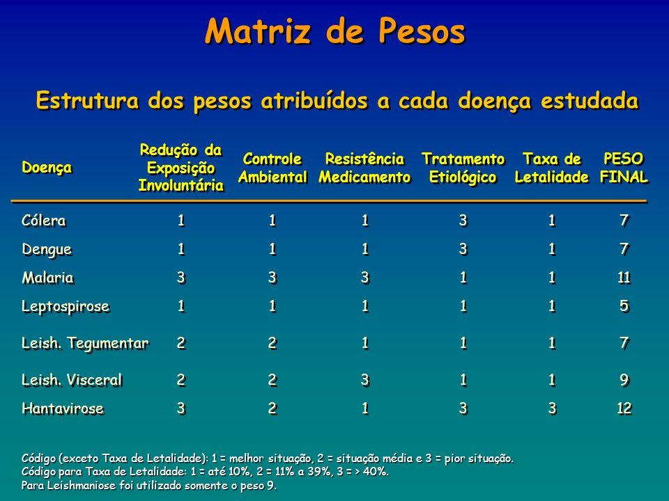 Matriz de Pesos Estrutura dos pesos atribuídos a cada doença estudada