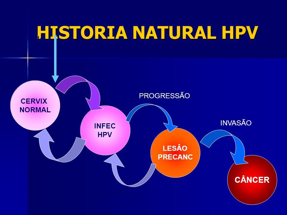 HISTORIA NATURAL HPV CÂNCER VACINA INFECÇÂO CERVIX PROGRESSÃO NORMAL