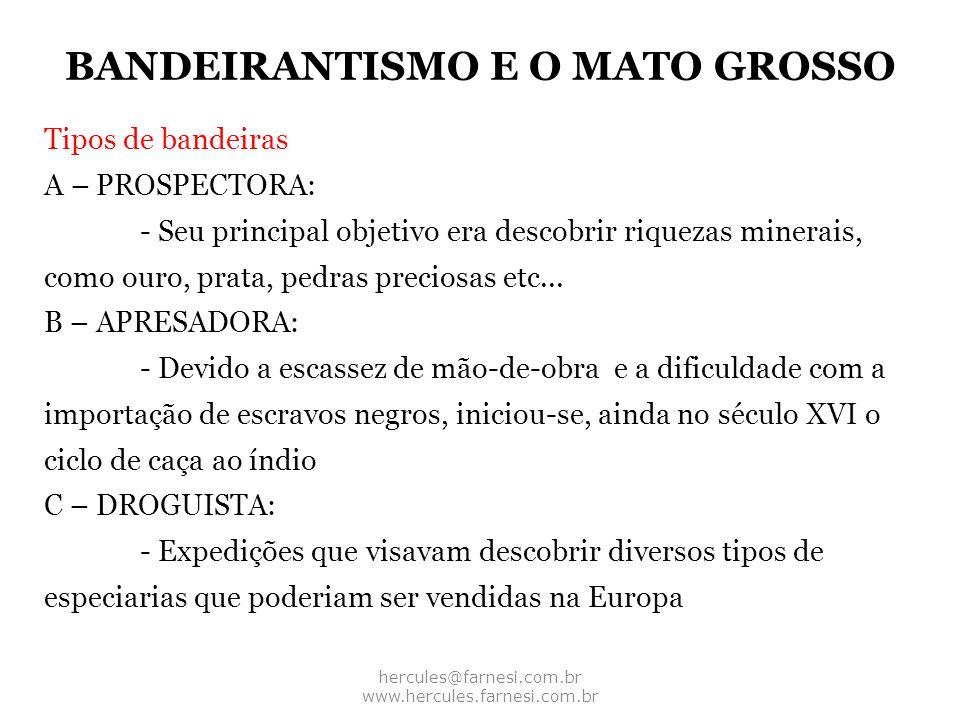 BANDEIRANTISMO E O MATO GROSSO