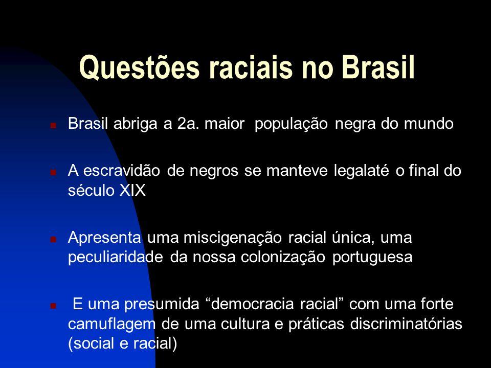 Questões raciais no Brasil