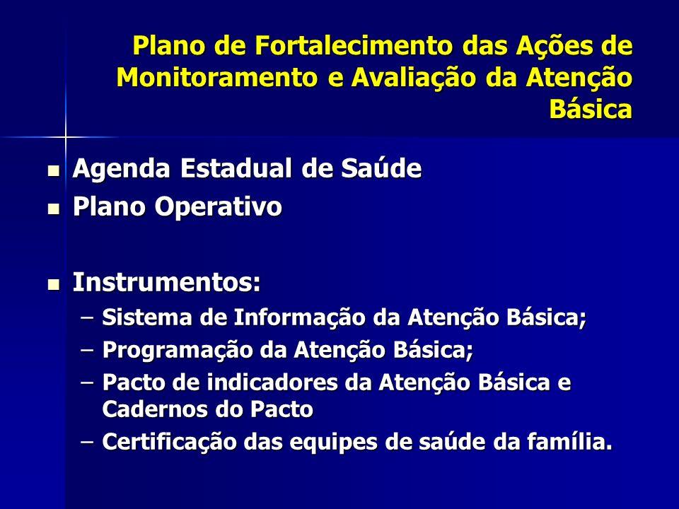 Agenda Estadual de Saúde Plano Operativo Instrumentos: