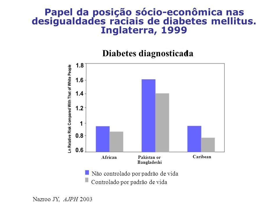 Papel da posição sócio-econômica nas