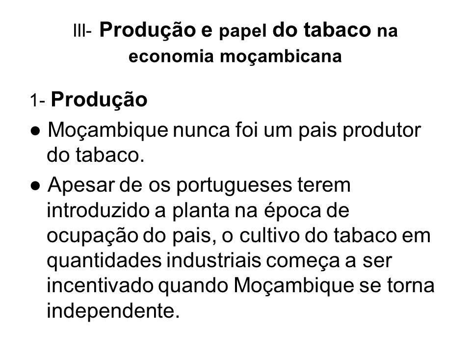 III- Produção e papel do tabaco na economia moçambicana