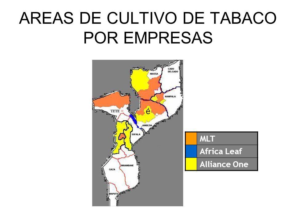 AREAS DE CULTIVO DE TABACO POR EMPRESAS