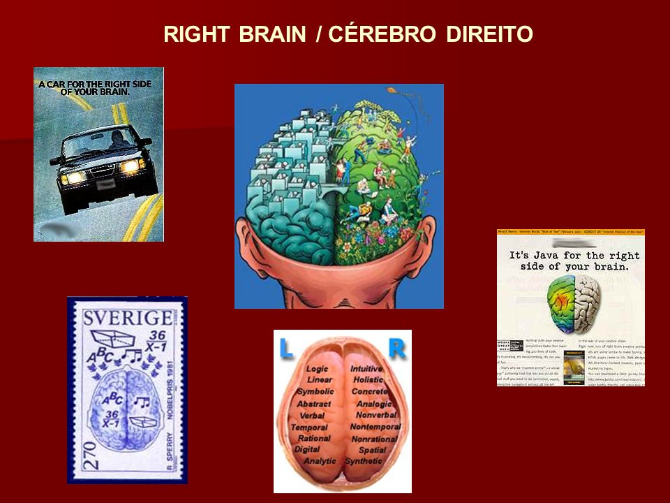 RIGHT BRAIN / CÉREBRO DIREITO