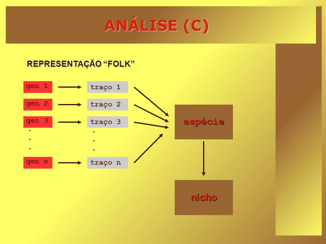 ANÁLISE (C) espécie nicho REPRESENTAÇÃO FOLK gen 1 traço 1 gen 2
