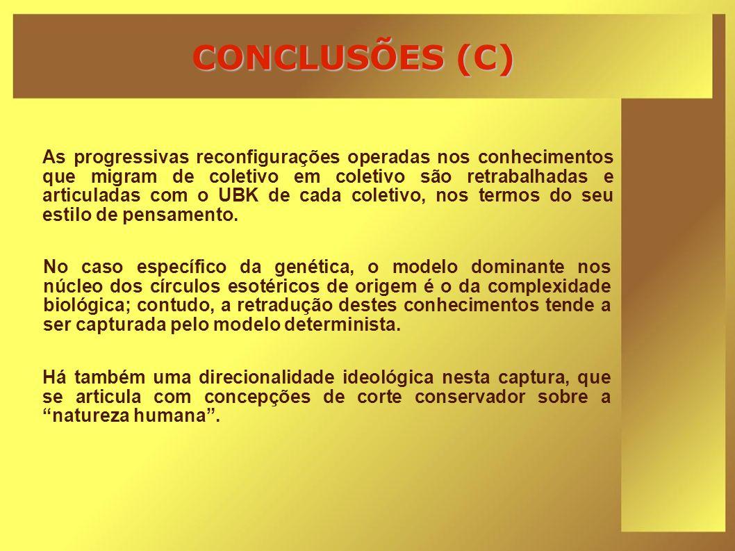 CONCLUSÕES (C)