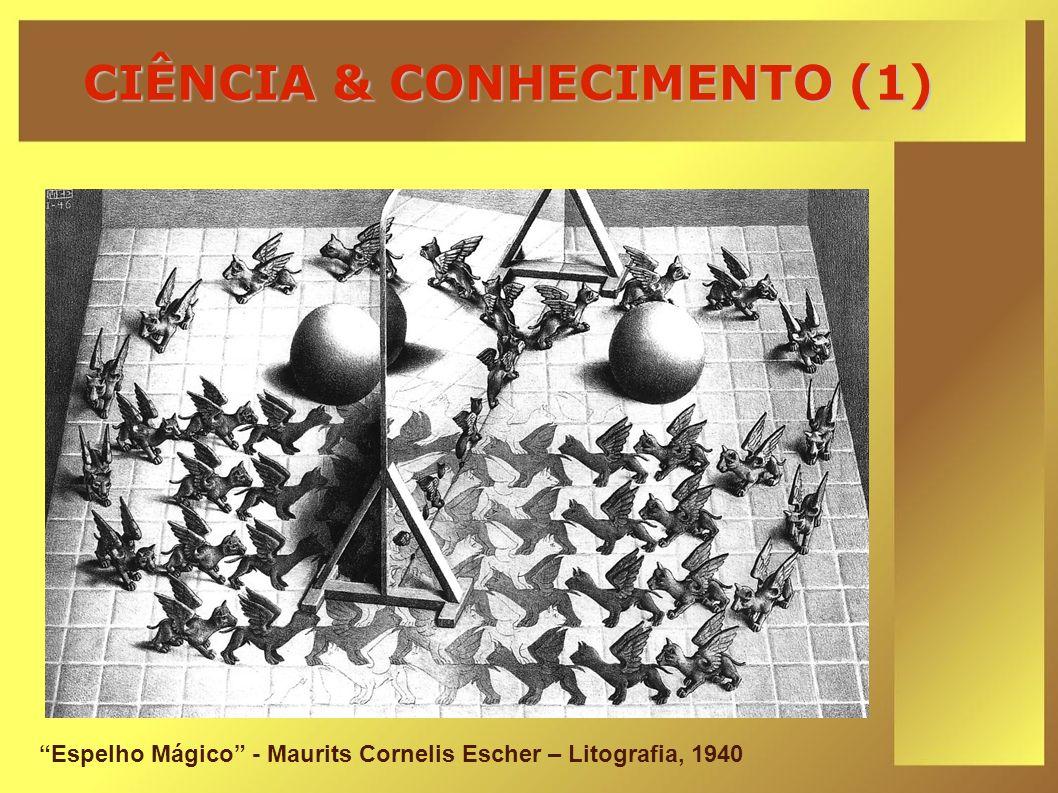 CIÊNCIA & CONHECIMENTO (1)