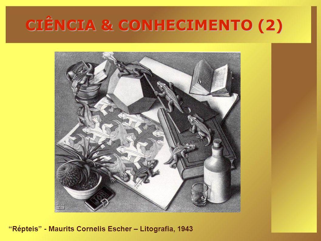 CIÊNCIA & CONHECIMENTO (2)