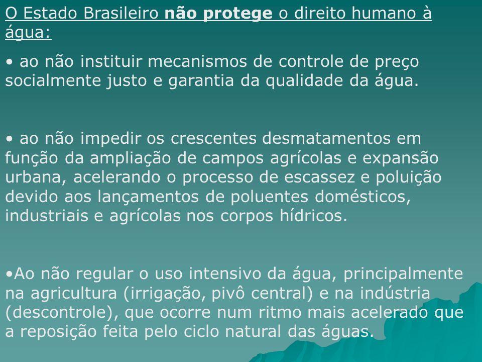 O Estado Brasileiro não protege o direito humano à água: