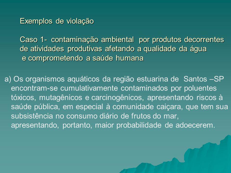 Exemplos de violação Caso 1- contaminação ambiental por produtos decorrentes de atividades produtivas afetando a qualidade da água e comprometendo a saúde humana