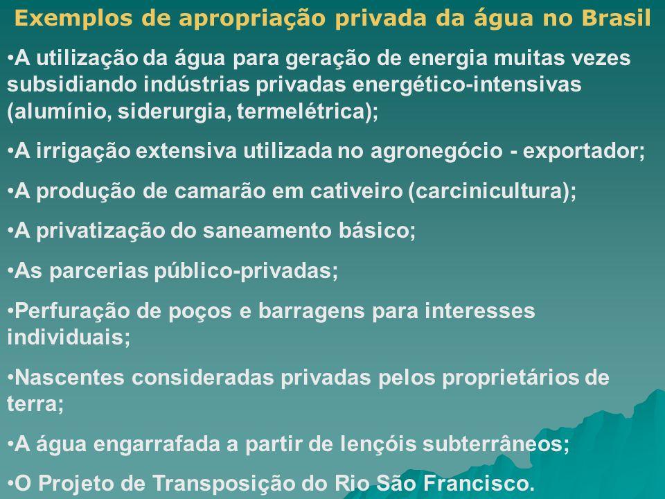 Exemplos de apropriação privada da água no Brasil