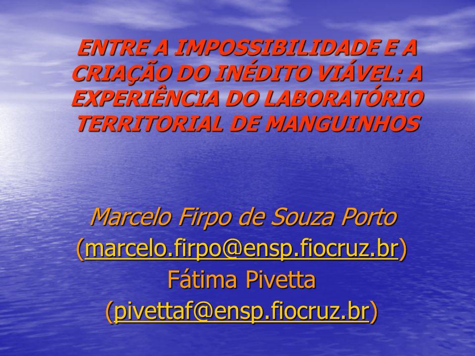 Marcelo Firpo de Souza Porto (marcelo.firpo@ensp.fiocruz.br)