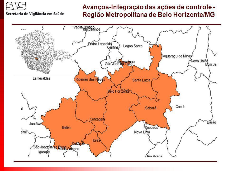 Avanços-Integração das ações de controle - Região Metropolitana de Belo Horizonte/MG