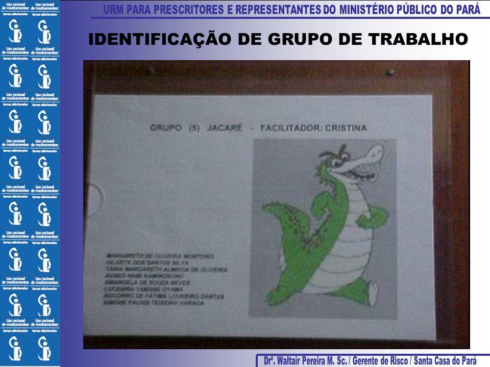 IDENTIFICAÇÃO DE GRUPO DE TRABALHO