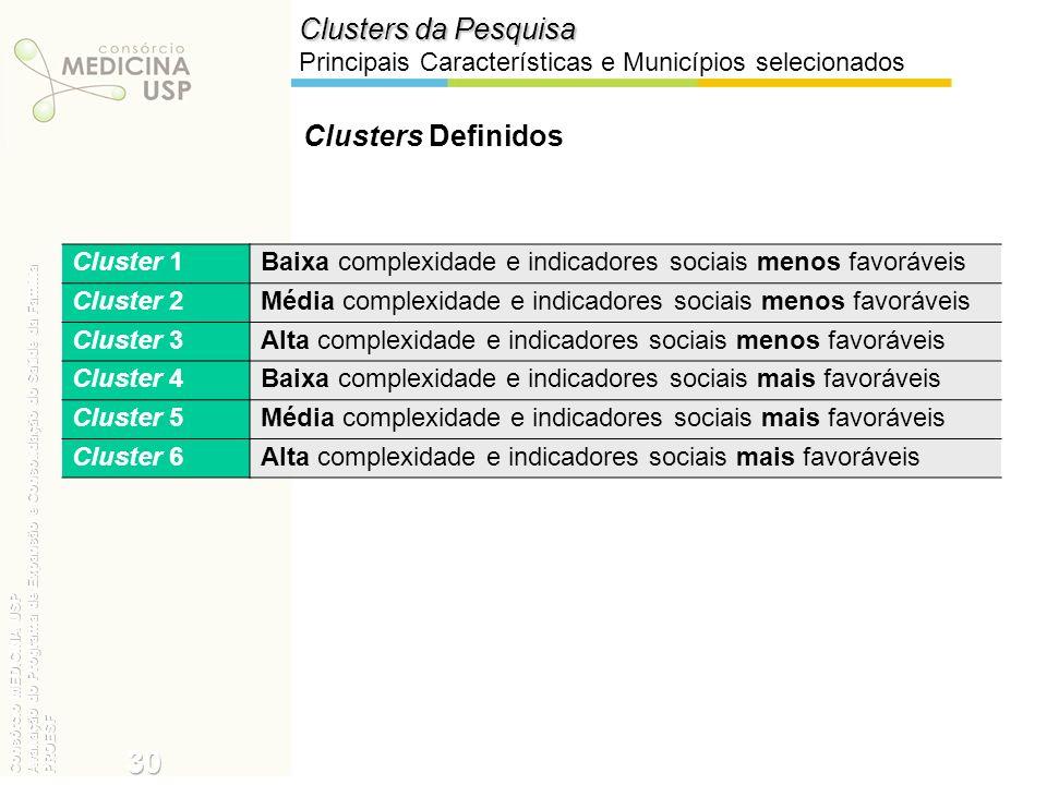 30 Clusters da Pesquisa Clusters Definidos