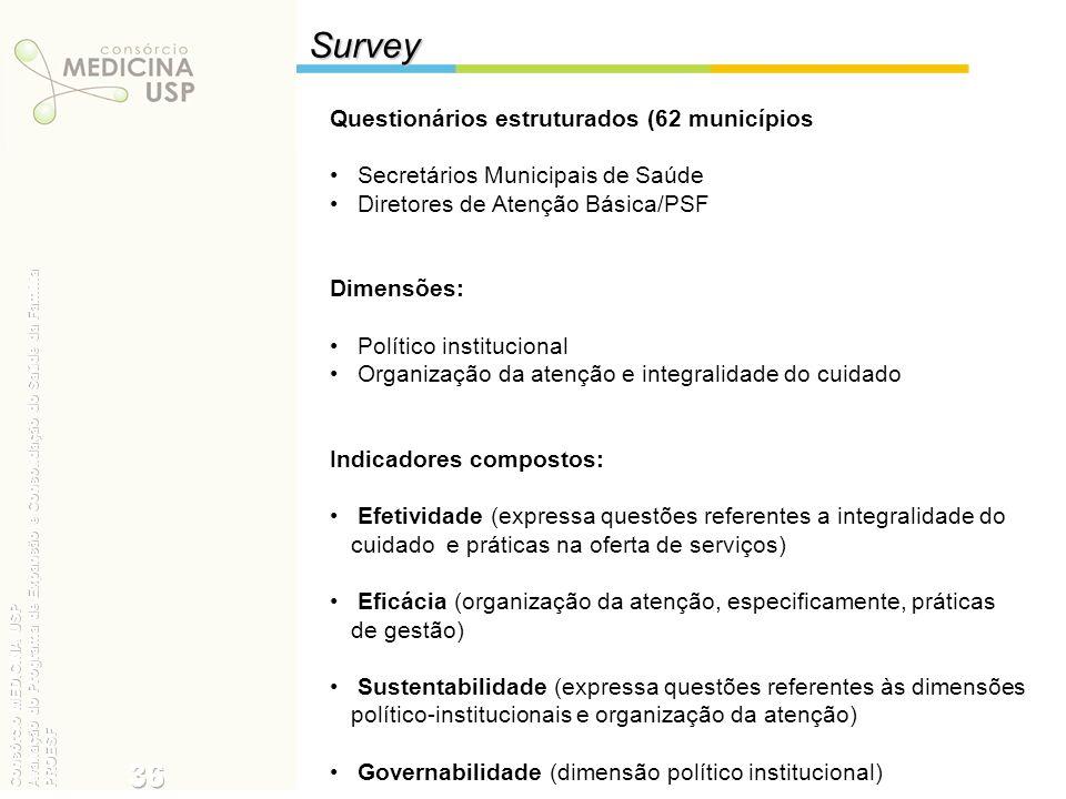 Survey 36 Questionários estruturados (62 municípios):