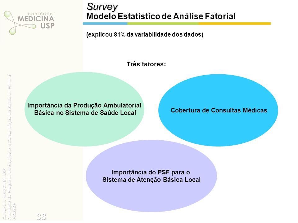 Survey 38 Modelo Estatístico de Análise Fatorial Três fatores: