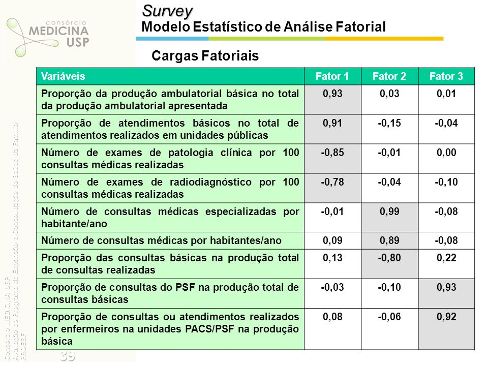 Survey 39 Modelo Estatístico de Análise Fatorial Cargas Fatoriais