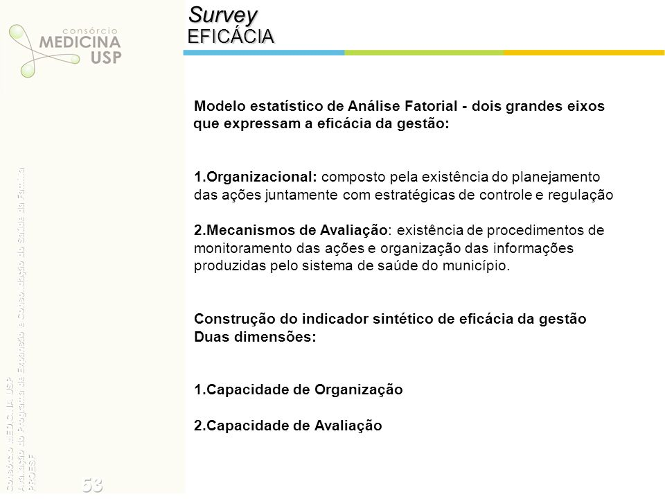 Survey EFICÁCIA. Modelo estatístico de Análise Fatorial - dois grandes eixos que expressam a eficácia da gestão:
