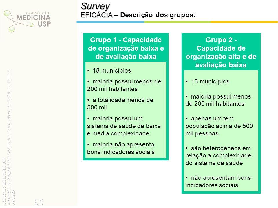 Survey 55 EFICÁCIA – Descrição dos grupos: