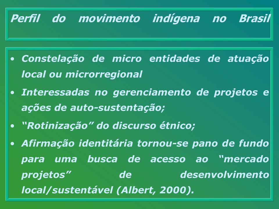 Perfil do movimento indígena no Brasil