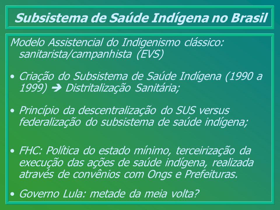 Subsistema de Saúde Indígena no Brasil