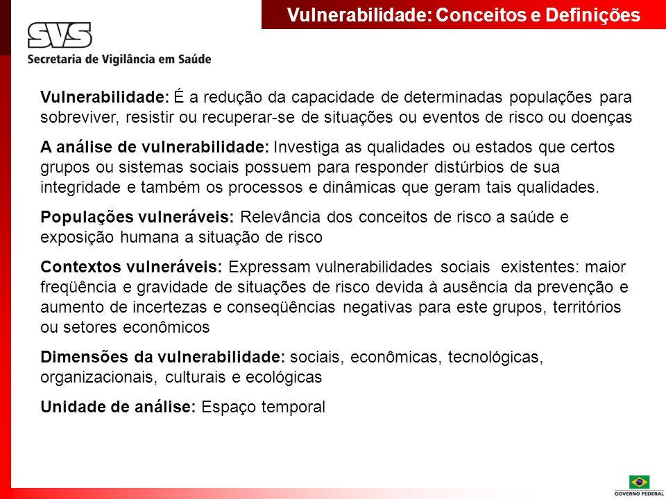 Vulnerabilidade: Conceitos e Definições