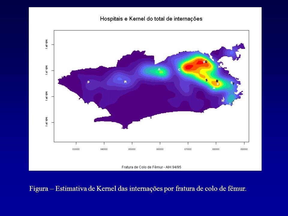 Figura – Estimativa de Kernel das internações por fratura de colo de fêmur.