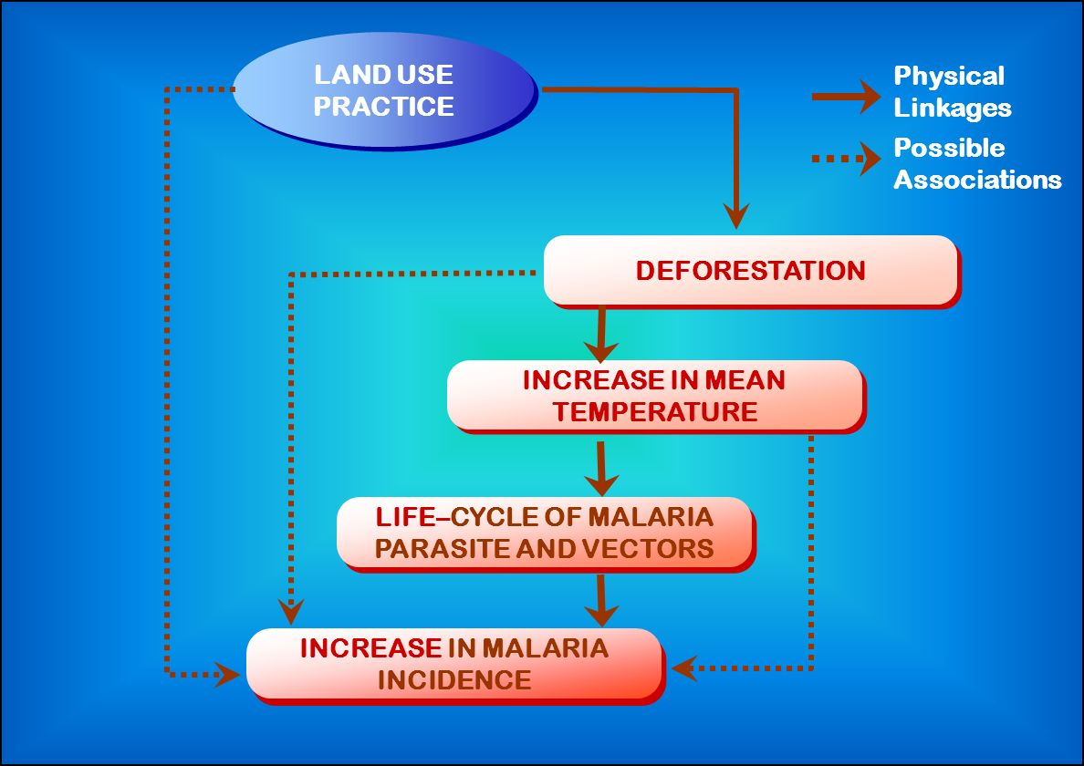 LIFE–CYCLE OF MALARIA PARASITE AND VECTORS LAND USE PRACTICE