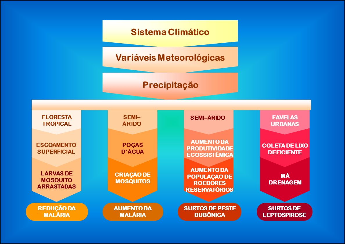 Sistema Climático Variáveis Meteorológicas Precipitação