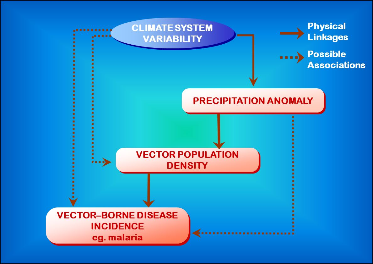 VECTOR–BORNE DISEASE INCIDENCE eg. malaria PRECIPITATION ANOMALY