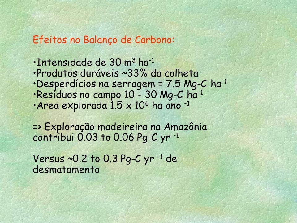 Efeitos no Balanço de Carbono: