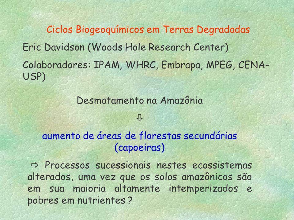 Ciclos Biogeoquímicos em Terras Degradadas