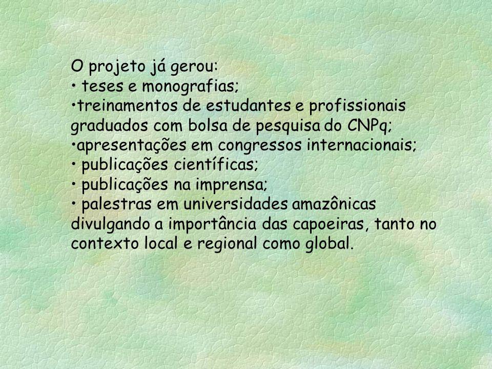 O projeto já gerou: teses e monografias; treinamentos de estudantes e profissionais graduados com bolsa de pesquisa do CNPq;