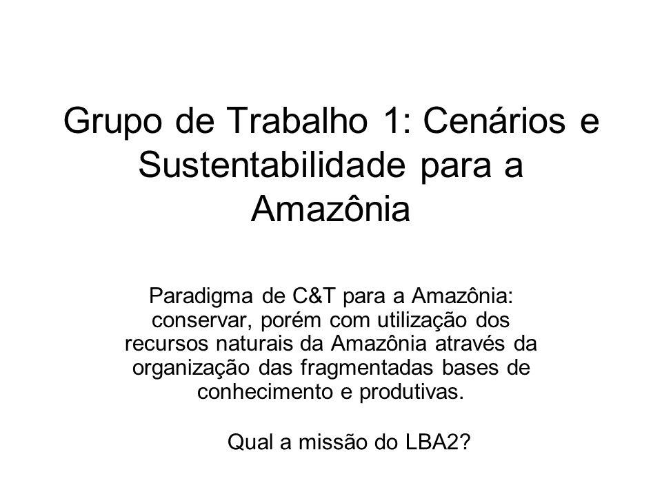 Grupo de Trabalho 1: Cenários e Sustentabilidade para a Amazônia