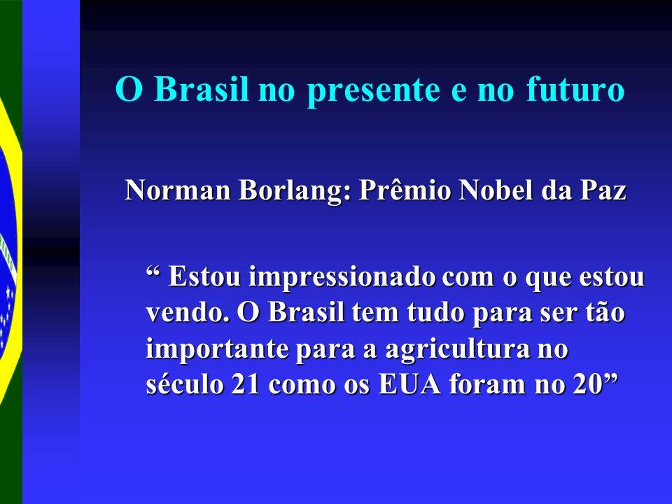 O Brasil no presente e no futuro