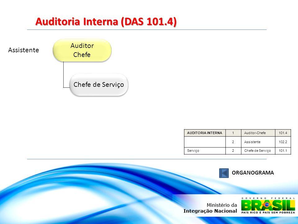 Auditoria Interna (DAS 101.4)