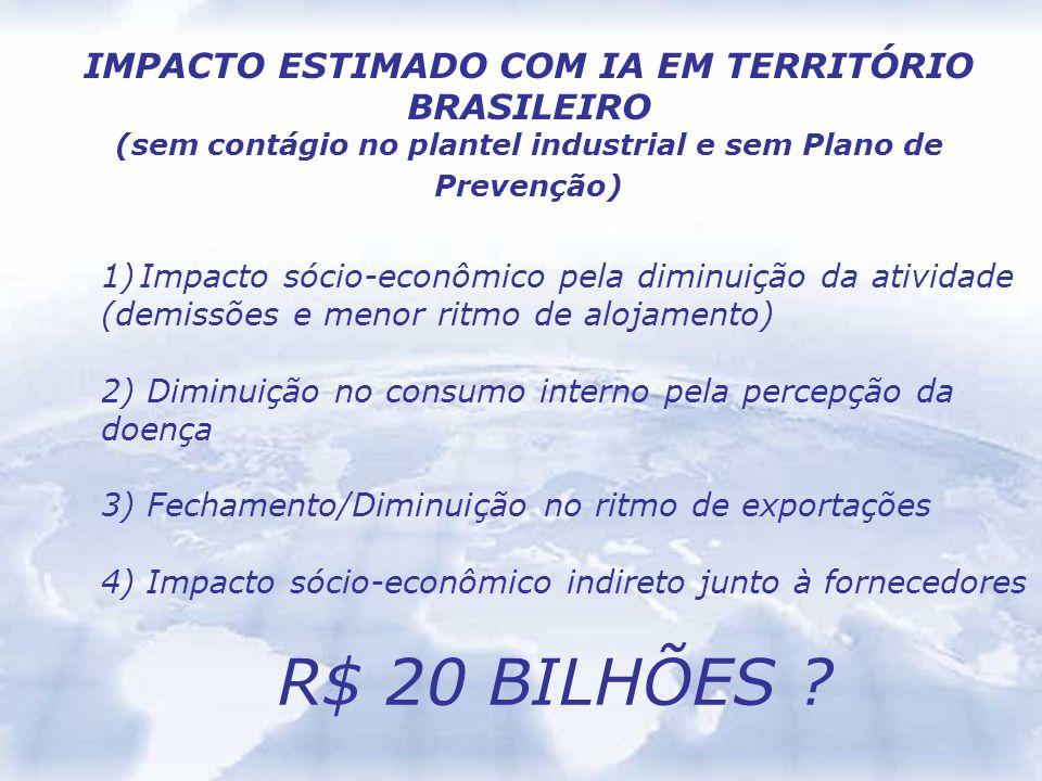 R$ 20 BILHÕES IMPACTO ESTIMADO COM IA EM TERRITÓRIO BRASILEIRO
