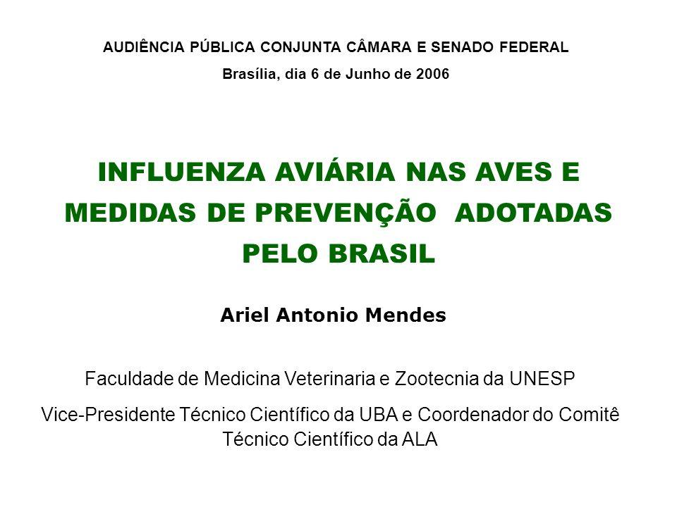 INFLUENZA AVIÁRIA NAS AVES E MEDIDAS DE PREVENÇÃO ADOTADAS PELO BRASIL