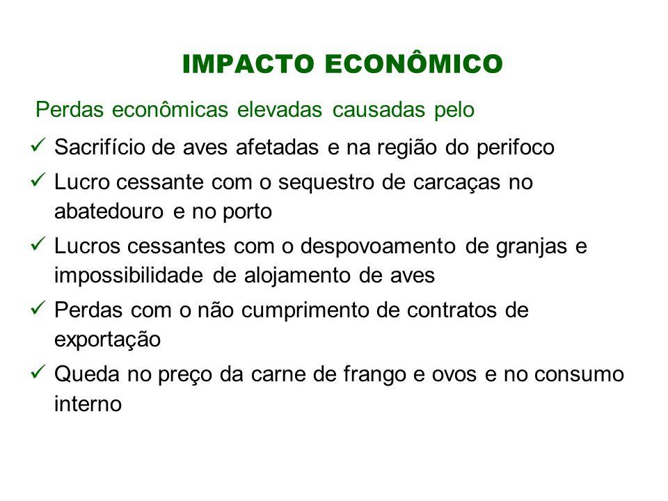 IMPACTO ECONÔMICO Perdas econômicas elevadas causadas pelo