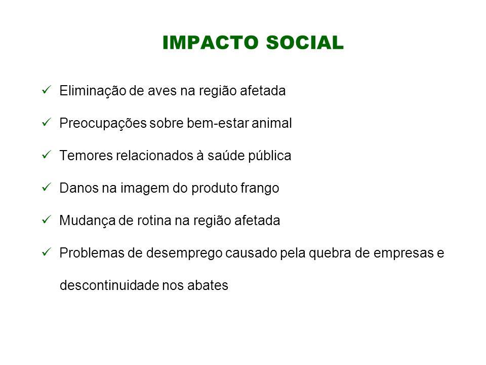 IMPACTO SOCIAL Eliminação de aves na região afetada