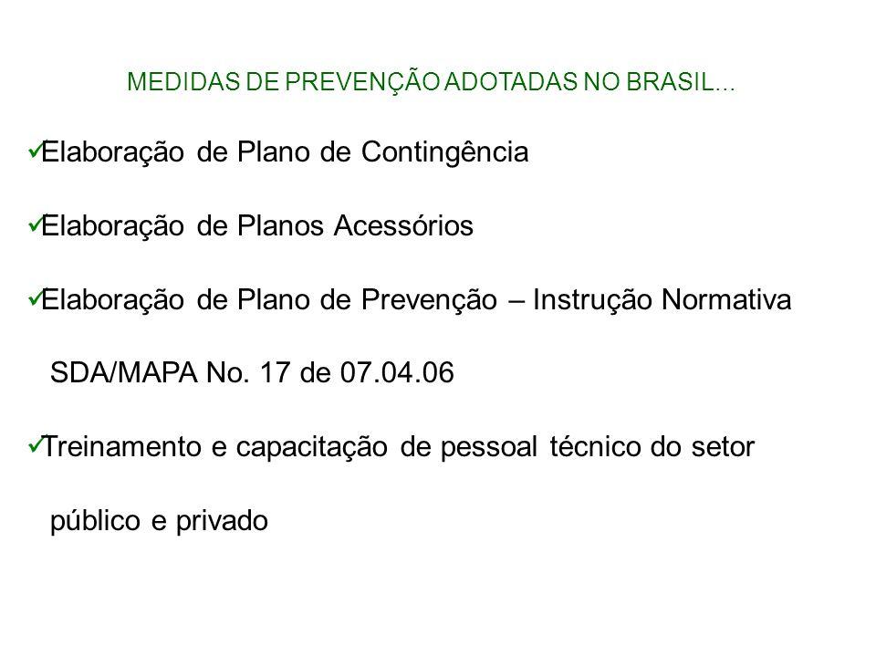 MEDIDAS DE PREVENÇÃO ADOTADAS NO BRASIL...