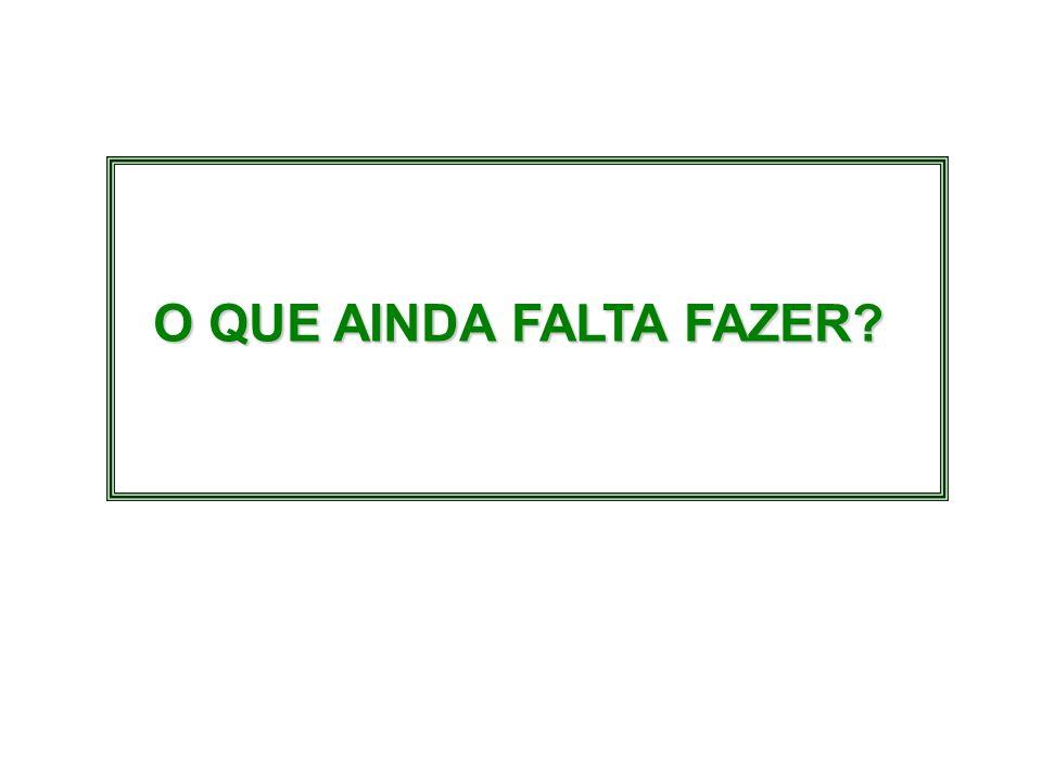 O QUE AINDA FALTA FAZER