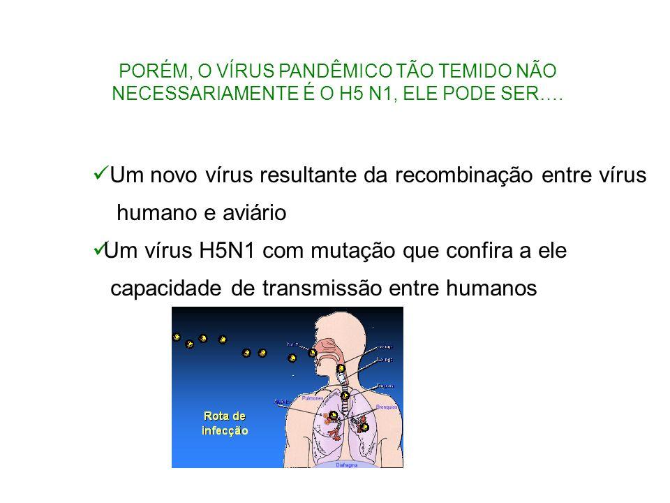 Um novo vírus resultante da recombinação entre vírus humano e aviário