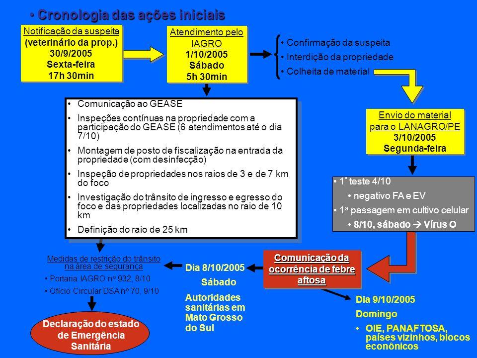 Cronologia das ações iniciais