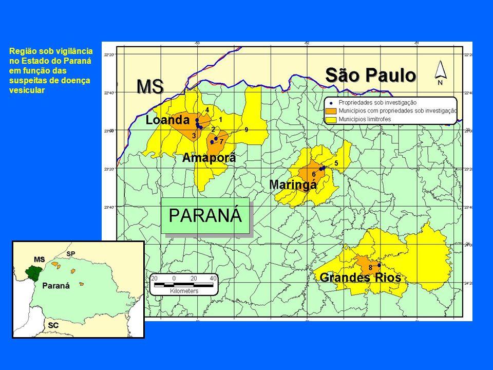 Região sob vigilância no Estado do Paraná em função das suspeitas de doença vesicular