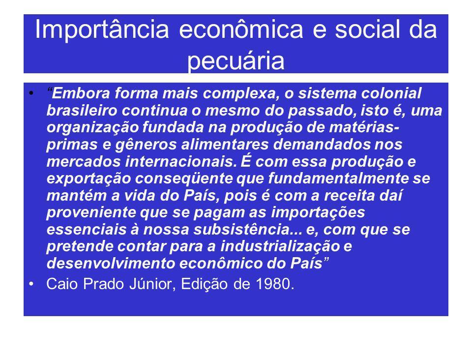 Importância econômica e social da pecuária