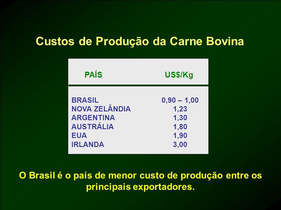 Custos de Produção da Carne Bovina
