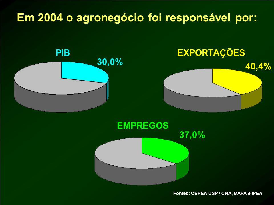 Em 2004 o agronegócio foi responsável por: